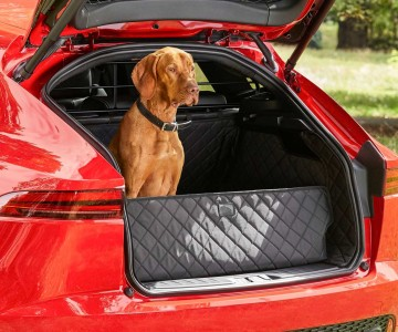 jaguar-pet-accessory-packs.jpg